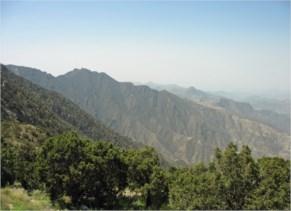 Khamis Mushayt