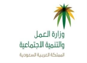 وزارة العمل - الدمام