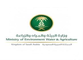 وزارة الزراعة - الدمام