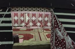 مخيم النايف
